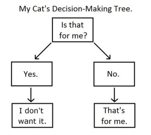 catdecisiontree