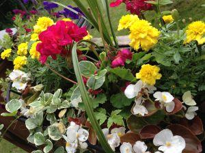 Flowersondeck