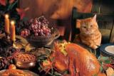 Gratitude–Again This Year