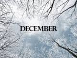 It's December: Time for CreativeFun