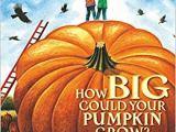 How Big Could Your PumpkinGrow?